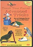Feathered Phonics Teach Your Parrot Series DVD 4: Advanced Tricks