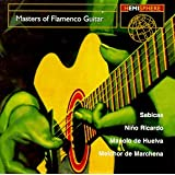Masters of Flamenco Guitar