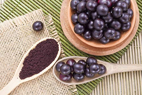 antioxidant Formula Supplement - Organic ACAI Juice Powder - Pure acai Natural - 3 Cans 24 OZ (195 Servings) by VIP VITAMINS (Image #3)
