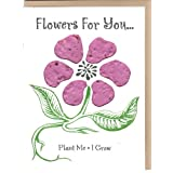 Flowers For You Pink 3 pack