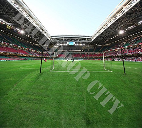 20'x18' SOCCER STADIUM TEAM SPORTS SCENIC URBAN HIP HOP BACKDROP BACKGROUND 18' Hop Ball