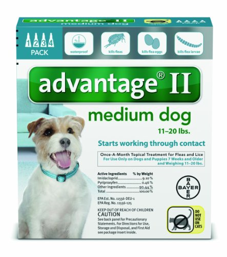 Bayer Advantage Ii Flea And Lice Treatment For Medium Dogs  11   20 Lb  4 Doses