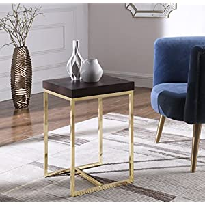 Iconic Home Colmar Nightstand Side Table with Ash Veneer Top Brass Brushed Stainless Steel Base, Modern Contemporary, Espresso