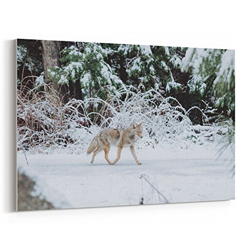 Westlake Art - Snow Winter - 12x18 Canvas Print Wall Art - Canvas Stretched Gallery Wrap Modern Picture Photography Artwork - Ready to Hang 12x18 Inch ()