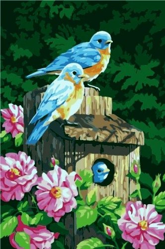 Prime Leader Wooden Framed DIY Oil Painting, Paint by Number Kit 16x20 inch Bird House