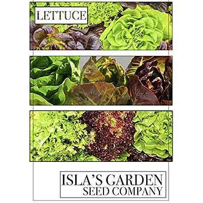 Lacinato Kale Seeds, 500+ Premium Heirloom Seeds, Popular Choice Kale! AKA: Dinosaur, Italiano, Toscano, Tuscan Kale, (Isla's Garden Seeds), Non GMO, 90% Germination Rates, Highest Quality Seeds : Garden & Outdoor