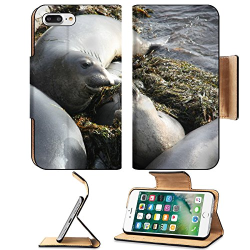 Luxlady Premium Apple iPhone 7 Plus Flip Pu Leather Wallet Case iPhone7 Plus 25347610 female and baby seals on the beach ()