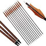 PG1ARCHERY 30 inch Archery Carbon Targeting Arrows Hunting Practice Arrow Sports 4'' Turkey Feather Fletching with Replacement Points Tips for Recurve Compound Bow Brown, 12 Pack
