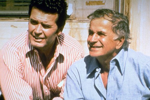 Image result for noah beery in the rockford files