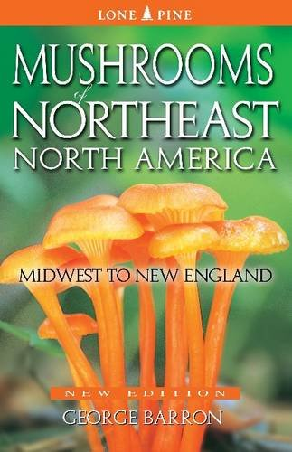 - Mushrooms of Northeast North America: Midwest to New England