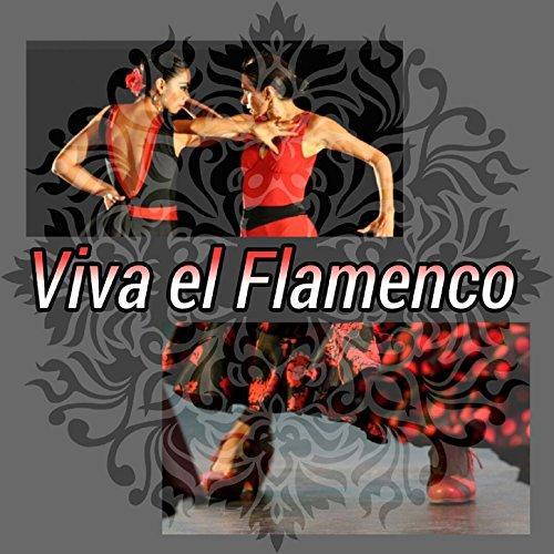 Viva el Flamenco!