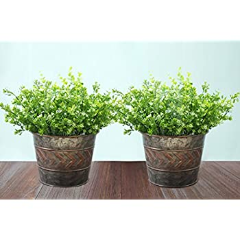 2 Pack Flower Pots Metal Galvanized Halloween Planters, 9 Inch, Indoor and Outdoor, Silver