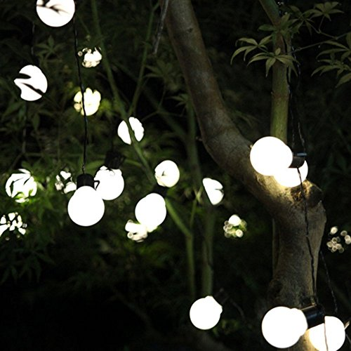 Peaubogo 8.35ft/2.5M 10LED Solar String Light Bulbs, Garden Solar Fairy Lights Patio Lights Outdoor Xmas Fairy Decorative Lamp Warm White by Peaubogo