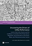 Uncovering the Drivers of Utility Performance, Luis A. Andrés and J. Luis Guasch, 0821396609