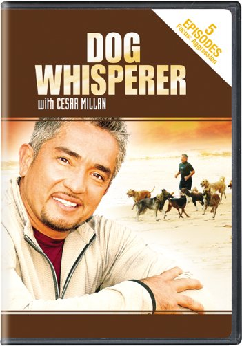 Dog Whisperer With Cesar Millan - - Tiffany And Stores Uk Co