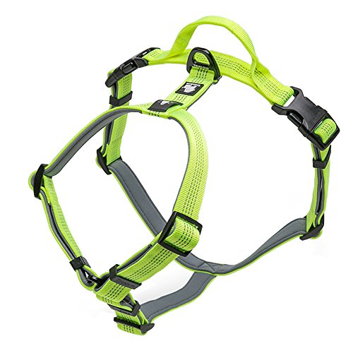 Pettom Dog Harness No-Pull Reflective Easy Walking Pet Vest Harness with Padded Handle Outdoor Adventure for Small Medium Large Dogs Review
