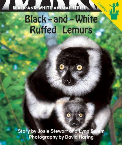 Early Reader: Black-and-White Ruffed Lemurs White Ruffed Lemur