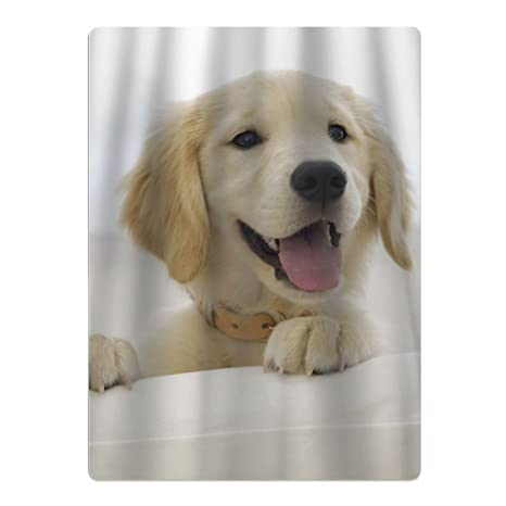 Nuevo golden retriever Super absorbente y suave Teens – Piscina toallas de playa toallas