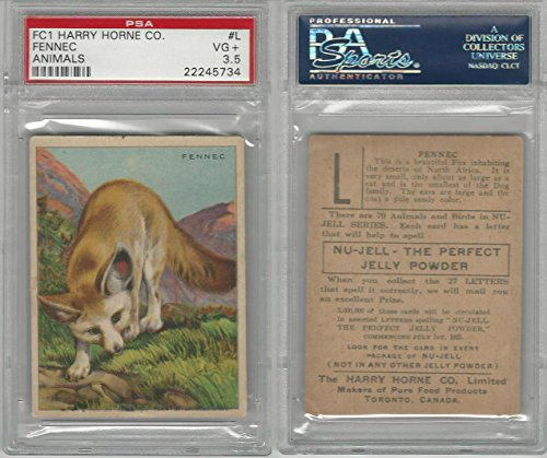 FC1, Harry Horne Co, Nu-Jell, Animals And Birds, 1925, Fennec, PSA 3.5 VG+ from OpenBinders