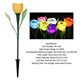 CHICTRY Tulip Path Light Solar Powered LED Light Outdoor Yard Garden Lawn Path Way Stake Lights Decorative Landscape LED Lamp Orange One Size