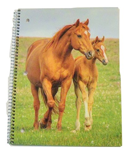 staples-wide-ruled-animal-spiral-notebook-horse-and-foal-70-sheets-140-pages