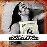vignette de 'Hommage (Yannick Noah)'