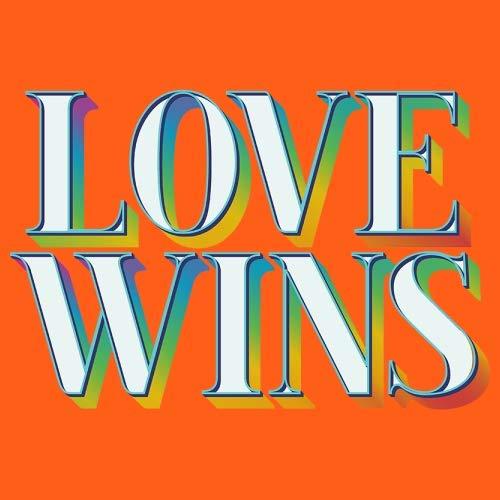 Dressdown Love Wins - Unisex Adult Apron - Orange - One Size by Dressdown (Image #2)