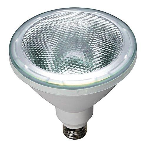 ELPA エルパボール LED電球 ビームランプタイプ 14.0W 昼光色相当 E26口金 1000lm 屋内屋外兼用 外径122mm 【10個入り】 LDR14DMG050 B00QF1W1IM