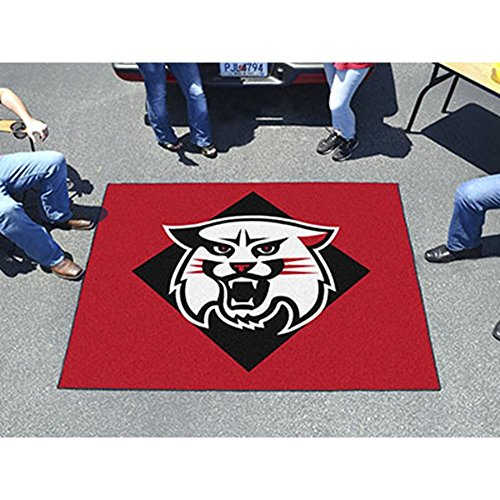 Fanmats 1311 New Hampshire Tailgater Rug (Hampshire Rugs New)