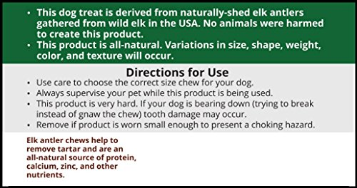 Large, Whole, Single Pack - Grade A Premium Elk Antler Dog Chew for 35 to 65 lb dogs – Naturally shed from wild elk – No Mess, No Odor – Made in the USA by Elkhorn Premium Chews (Image #4)