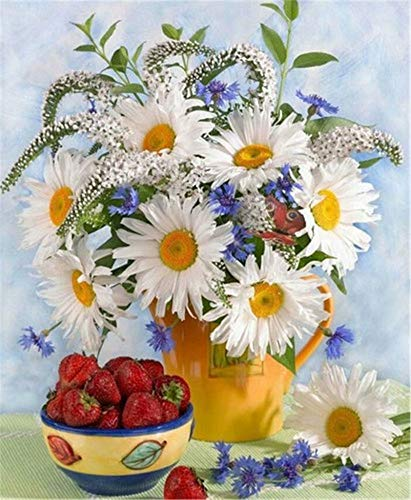 (Crafts Paint Jobs By Digital Kit,Kids Color By Number Kit With Tag, Chrysanthemum Flower Strawberry,16''X20'')