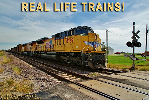 Train Railroad Real Photo (Real Life Trains! A Photo Book of Trains for Children)