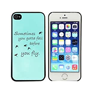 amtonseeshop Various New Stylish Personalized Protective Snap On Hard Plastic Case For iphone 5 5S 5G (Sky Blue Free Birds) by mcsharks