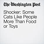 Shocker: Some Cats Like People More Than Food or Toys | Karin Brulliard