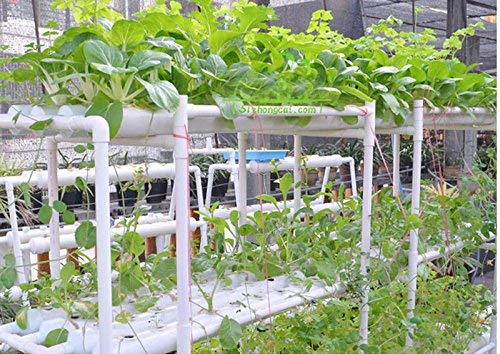 Latest INTBUYING Hydroponic Grow Kit Hydroponic Growing System for Leafy Vegetables 10 Pipes 3 Layers 90 Plant Sites Hydroponic System 4