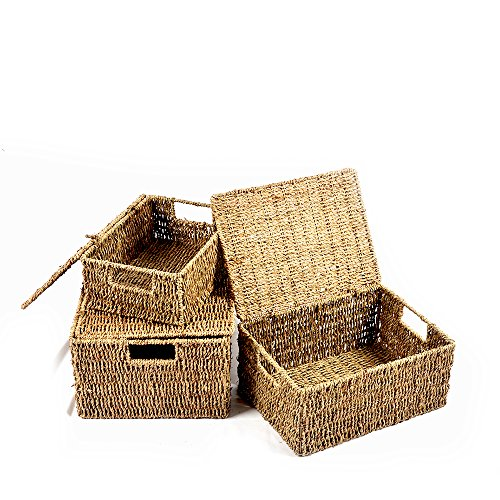 Haneye Seagrass Storage Baskets, Woven Seagrass Baskets with Lid and Insert Handles for Home Bathroom Organization (Set of 3) -