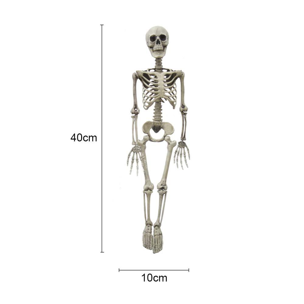 Amazon Keebgyy Halloween Skeleton Plastic Full Body Mini Human