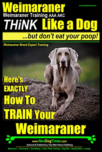 Weimaraner, Weimaraner Training AAA AKC | Think Like a Dog, But Don't Eat Your Poop! | Weimaraner Breed Expert Training: Here's EXACTLY How To Train Your Weimaraner