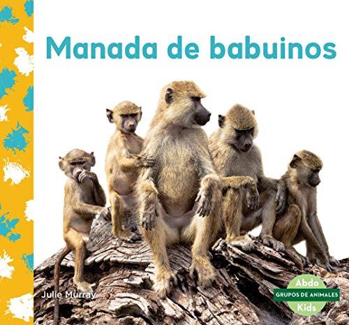 Manada de Babuinos (Baboon Troop)