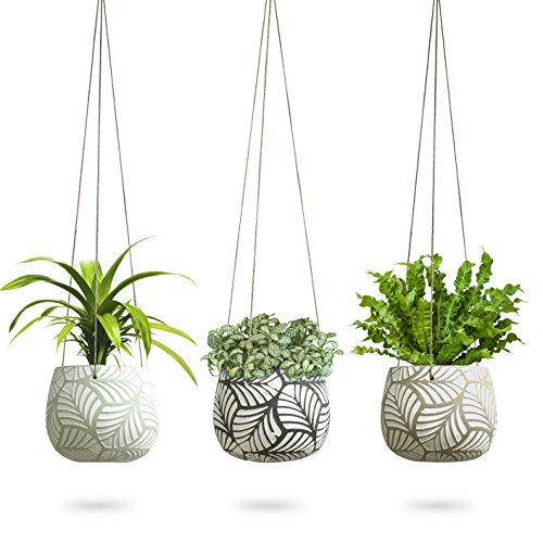3 Pack Hanging Planter for Indoor Plants | White Concrete