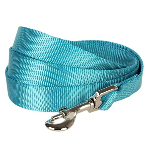 Blueberry Pet 19 Colors Durable Classic Dog Leash 5 ft x 3/4