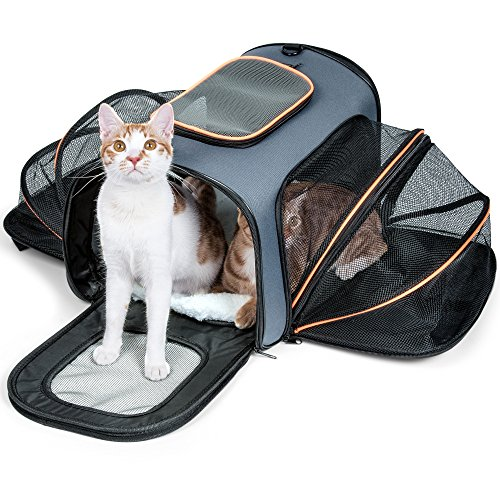 Pet Carrier for Dogs & Cats - Airline Approved Expandable Soft Animal Carriers by F-color, TWO SIDES Expansion, Extra Spacious Soft Sided Air Travel Bag for Designed for Cats, Dogs, Kittens,Puppies