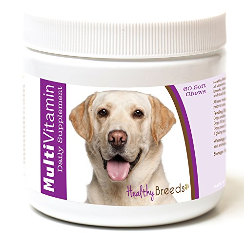 Healthy Breeds Dog One A Day Vitamin Soft Chews For Labrador Retriever, White- Over 200 Breeds - For Small Medium & Large Breeds - Easier Than Liquid Or Powders - 60 Chews (Best Vitamins For Labradors)
