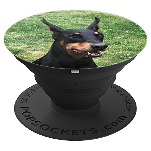 Doberman Pinscher Dog Breed - Doberman Pinscher, German Dog Breed - PopSockets Grip and Stand for Phones and Tablets