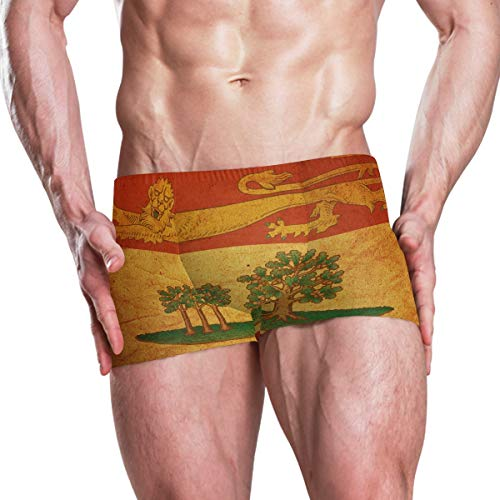 - Vintage Prince Edward Island Provincial Flag Men's Swim Trunks Swimming Briefs Beach Shorts Boxer Briefs