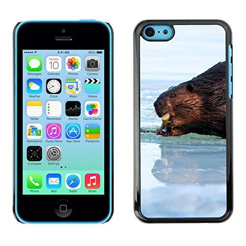 Premio Sottile Slim Cassa Custodia Case Cover Shell // F00007179 castor // Apple iPhone 5C