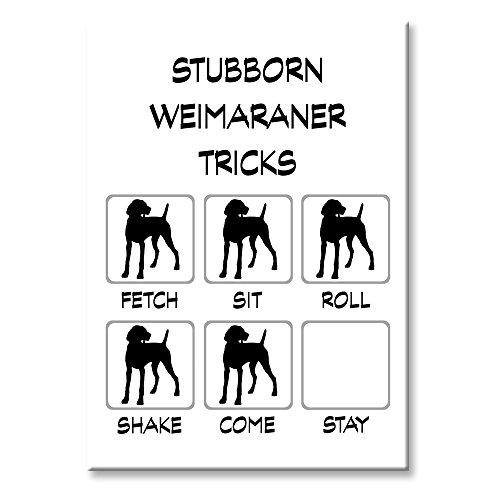 Weimaraner Stubborn Tricks Fridge Magnet