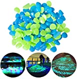 CandyHome 200Pack Glow in The Dark Garden Pebbles for Walkways Outdoor Decor Aquarium Fish Tank, Glow Stones Rocks for Path Lawn Yard Outdoor Garden Decorative Stones (Blue & Green)