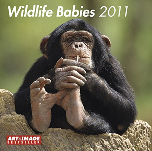 Wildlife Babies 2011 (Square Wall Cal)
