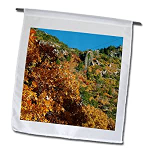 Jos Fauxtographee Outdoor - Trees turning to orange in the fall in Pine Valley, Utah - 12 x 18 inch Garden Flag (fl_64803_1)
